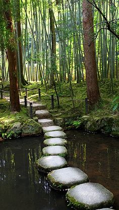 Path Stones laid across a shallow pond in the formal garden at the Nanzen-ji temple in Kyoto, Japan.