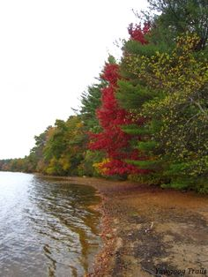 Three Point Waterfront earlier in fall at Camp #Yawgoog.  A 2014 image by David R. Brierley.