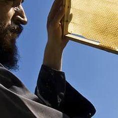 Αγνό - ακατέργαστο μέλι από το Άγιον Όρος. Άριστη ποιότητα σε μοναδικές γεύσεις
