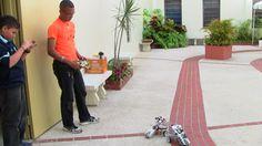 Probando los robots