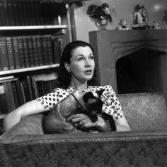 L'attrice Vivien Leigh con il gatto di famiglia nella casa londinese di Chelsea, 1935