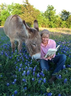 Flash Sees His Book For the First Time! Flash, The Homeless Donkey Who Taught Me About Life, Faith and Second Chances, By Rachel Anne Ridge