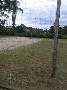 Campo de woley