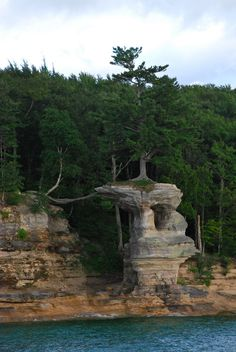 Chapel Rock & a very tenacious tree, to say the least. The white pine on top gets most of it's nutrients through that mass of roots that bridge the gap between Chapel Rock and the neighboring cliff face. The roots have been exposed for 50+ years.