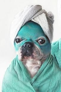 Puppy Spa day- we just had to include this :) My pup would definitely be joining me at my at-home spa day :) @Diane McCoy Jeunesse and @Influenster