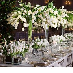 Hottest Absolutely Free Tulip wedding Style Extended reside the tulip ! Place this colorful treasure let's focus on a pleasant show at the begining of Tulip Centerpieces Wedding, Wedding Flower Arrangements, Wedding Decorations, Centerpiece Ideas, Elegant Centerpieces, Floral Wedding, Wedding Flowers, Wedding Motifs, White Tulips