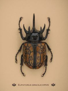 Wrought Iron I Hand Painted and Framed Beetle by TheGoldenGear