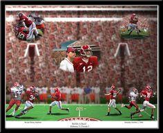 "Bryant Denny Stadium. ""Bama is Back"" Framed Picture"