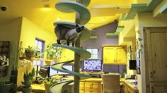 Cats have a real paradise inside this man's home - http://uciki.com/2015/04/17/cats-real-paradise-inside-mans-home/ - #Cats, #Creative, #Interesting