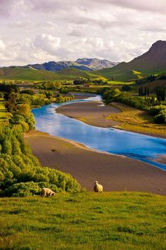 New Zealand. Near the very top of my bucket list. I want to hike all over the place here and soak everything in. http://www.travelandtransitions.com/destinations/destination-advice/australia-south-pacific/travel-new-zealand-auckland-christchurch-wellington-the-southern-alps-and-lots-of-beautiful-nature/