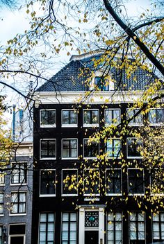 Abby Ingwersen | Lace & Lilacs » Amsterdam, the Netherlands