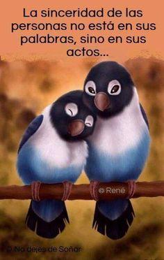 Animated Gif by jade Gif Animé, Animated Gif, Gifs, Beautiful Birds, Beautiful Babies, Beautiful Places, Cute Birds, Colorful Birds, Pet Shop