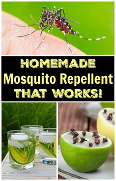 Homemade Mosquito Repellent that works! - Kitchen Fun With My 3 Sons