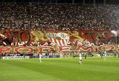 Sevilla Ultras Football, Soccer, Sports, Sevilla, Hs Sports, Futbol, European Football, European Soccer, Football