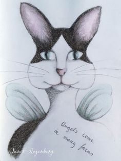 Feline - pencil pastel drawing painting shadowheartchallenge day 17