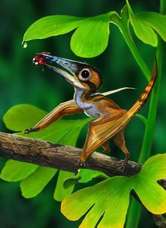 Nemicolopterus is a genus of pterodactyloid pterosaur, described in 2008. The…