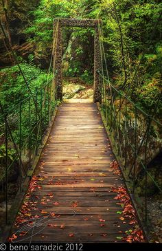 Lovely little suspended bridge over the Tolminka river at the Tolmin Gorges in Slovenia