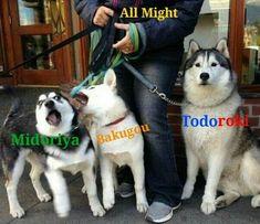 memes // Midoriya // Bakugou // Todoroki // All Might // My hero academia Boku No Hero Academia Funny, My Hero Academia Shouto, My Hero Academia Episodes, Hero Academia Characters, Meme Characters, Anime Meme, M Anime, Funny Anime Pics, Otaku Anime