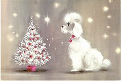 Another vintage poodle Christmas card! Vintage Christmas Images, Retro Christmas, Vintage Holiday, Christmas Pictures, White Christmas, Christmas Tree Cards, Christmas Past, Christmas Greetings, Christmas Puppy