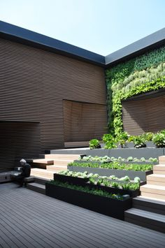 Reforma 412 roofgardens - could work on tiered steps of pyramid type deck on above ground pool.