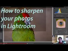 Learn How to Use the Sharpening Tools in Lightroom - Digital Photography School