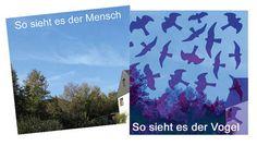 durchsichtiger Vogelschutzaufkleber - www.schoenerschweiz.ch