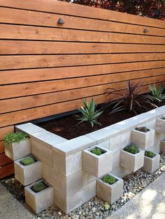 landscape idea. love the clean look of this for a succulent garden - the cedar wall backdrop makes it perfect.