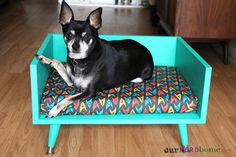 DIY Midcentury dog bed | Our Nerd Home. Fabric by Meglish on Spoonflower.