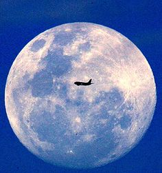Blue Moons | Eyes to the Sky'': Blue Moon