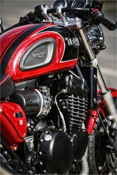67 ideas for motorcycle sport triumph bonneville Triumph Motorbikes, Triumph Bonneville, Triumph Motorcycles, Triumph Scrambler, Triumph Thunderbird 900, Thunderbird Cafe, British Motorcycles, Vintage Motorcycles, Custom Motorcycles