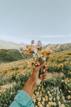 You are in the right place about fall Flowers Here we offer you the most beautiful pictures about th Spring Aesthetic, Nature Aesthetic, Flower Aesthetic, Aesthetic Photo, Aesthetic Pictures, Aesthetic Collage, Aesthetic Backgrounds, Aesthetic Iphone Wallpaper, Aesthetic Wallpapers