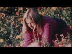 The Babe Rainbow - Eureka / Alan Chadwick's Garden