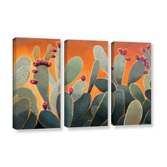 Shop for ArtWall Rick Kersten 'Cactus Orange' 3 Piece Gallery-wrapped Canvas Set. Get free delivery On EVERYTHING* Overstock - Your Online Art Gallery Store! Small Canvas, Canvas Art, Canvas Prints, Diy Canvas, 3 Piece Painting, Painting Prints, House Painting, Orange Wall Art, Acrylic Paint Set