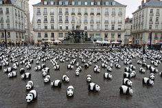 La place Royale de Nantes et ses pandas. Superbe. Frédérique Barteau, l'une des stars des réseaux sociaux l'utilise comme couv' de son compte Twitter.