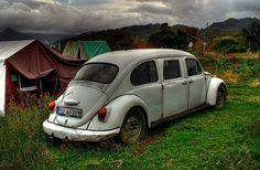 Beetle limo