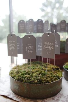 seating tags displayed in moss in old vintage cake pan for wedding, great idea