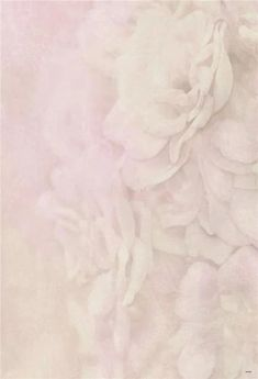 Pink Soft Rose Floral Photography Backdrop GA-56 – Dbackdrop
