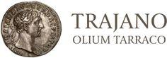 El aceite TRAJANO es por definición un Aceite de Oliva Virgen Extra Siurana con Denominación de Origen Protegida (DOP), al amparo del Consejo Regulador fundado en el año 1979 y con una tradición y calidad desde 1911 en el ámbito de las Comarcas del Priorato, Alto y Bajo Penedés, La Conca de Barbera, La Ribera de Ebro y el Tarragonés.