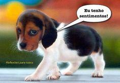 """O mundo seria melhor se as pessoas fossem tão humildes, fiéis, generosas, carinhosas e objetivas como os cães.  Visite nosso blog """"Reflexões Para Todos"""" e encontre lindas mensagens (clique na imagem)."""