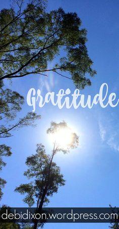 Gratitude | Debi Dixon