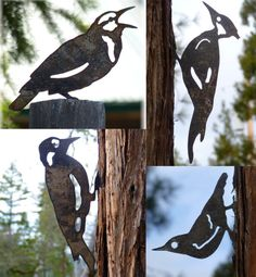 4 Bird Pack *Pileated *Woodpecker *Meadowlark *Nuthatch Lifesize Metal Cutout Post Garden Art