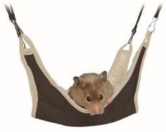 Trixie Hammock 62691 - For Hamsters Gerbils Mice Degus & Small Rodents Etc. Hamsters, Gerbil, Rodents, Nylons, Online Pet Supplies, Hammock, Pets, Animals, Shoes