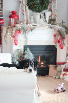Hello again friends. I'm honoured to have you here with me as I join some of my friends in The Cherished Christmas Home Tours with Country Living Magazine. This tour is being hosted by my dear frie...