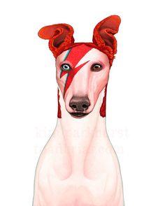 A Hound Insane  Bowie Greyhound Portrait signed print por toadbriar