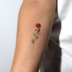100 de los mejores tatuajes pequeños - 100 Of The Best Small Tattoos - Best Tattoo Share Tiny Rose Tattoos, Dainty Tattoos, Delicate Tattoo, Cool Small Tattoos, Little Tattoos, Pretty Tattoos, Mini Tattoos, Unique Tattoos, Flower Tattoos