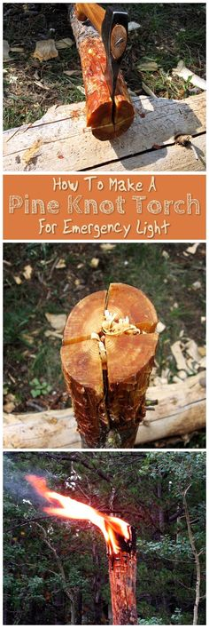 How To Make A Pine Knot Torch For Emergency Light - Whether navigating the woods in a survival situation or simply needing an emergency light when resources are limited, knowing how to make a torch with just a few common supplies is a valuable skill. Images From: rockymountainbushcraft.blogspot.ca