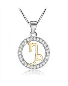 Silver 925 Capricorn Horoscope Pendant Necklace with CZ