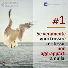 #infinitemandala #crescitapersonale #attaccamento