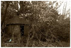 """""""Abandoned Places"""" by Claire Inkson"""
