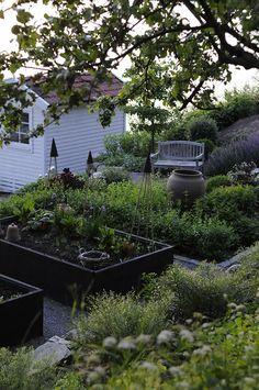 ♕ lovely garden